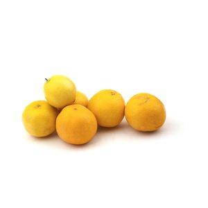 لیمو شیرین  Fresh مقدار 1 کیلوگرم