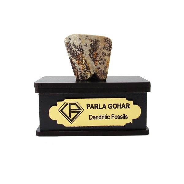 سنگ راف شجر فسیلی پارلا گوهر کد 2197
