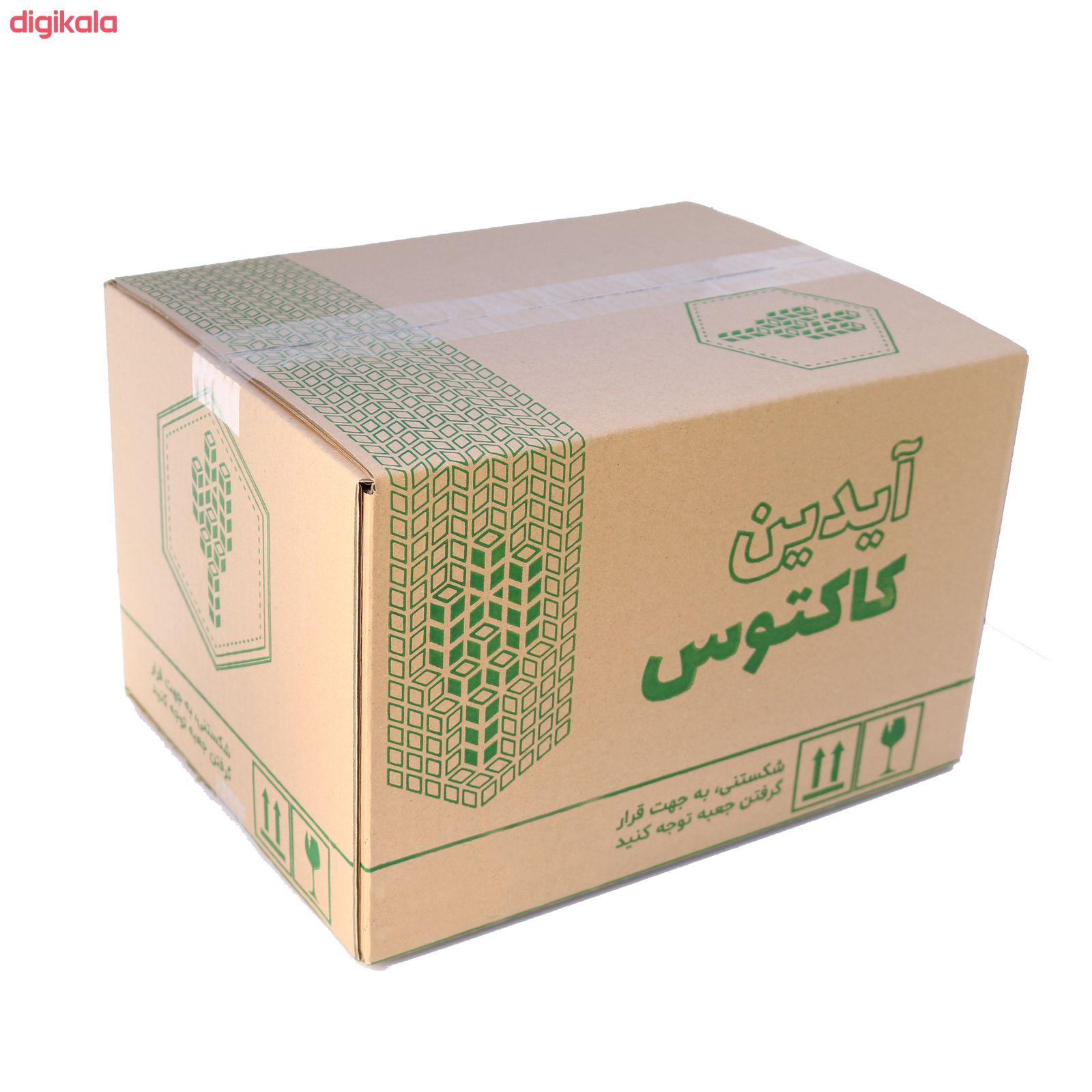 گیاه طبیعی کاکتوس و ساکولنت آیدین کاکتوس کد CB-004 بسته 12 عددی main 1 7