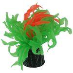 گیاه تزیینی آکواریوم مدل ژله اي