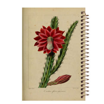 دفتر یادداشت مشایخ طرح کاکتوس کد 5130