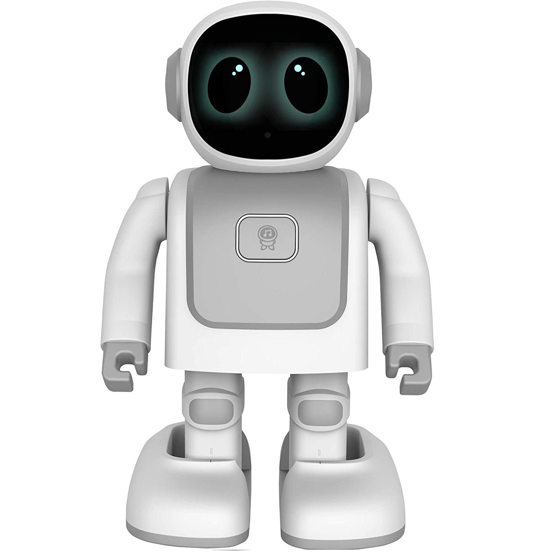 ربات مدل Robert