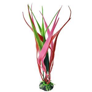 گیاه تزئینی آکواریوم کد Ma0015
