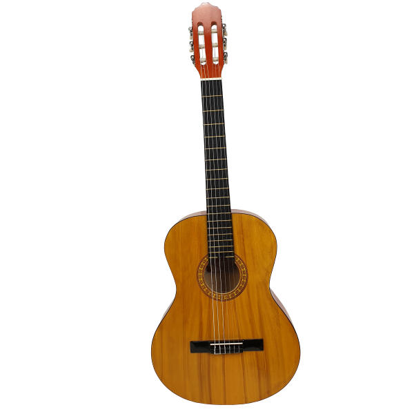 گیتار کلاسیک گلد مدل G40