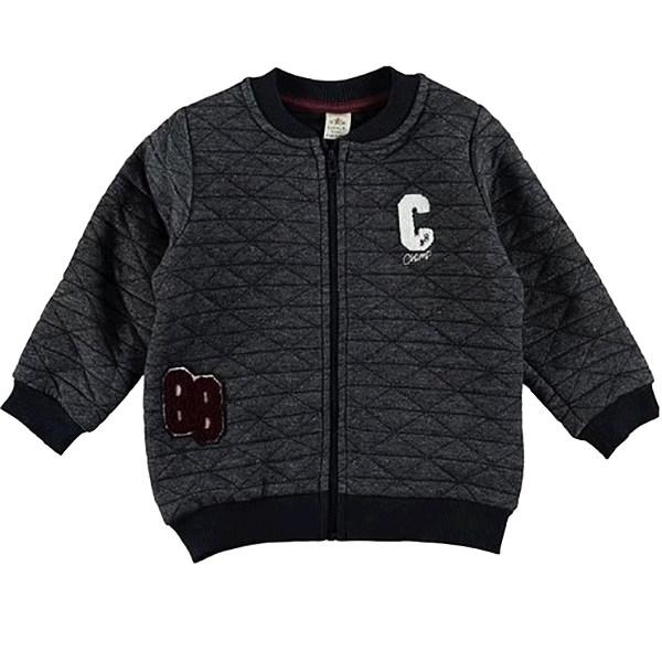 سوییشرت نوزادی پسرانه ال سی وایکیکی مدل L20200831
