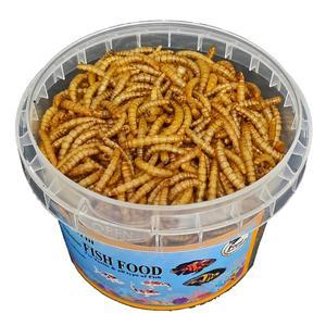 غذا خشک ماهی فایتر و گوشتخوار فود فارمز لند مدل میلورم وزن 50 گرم