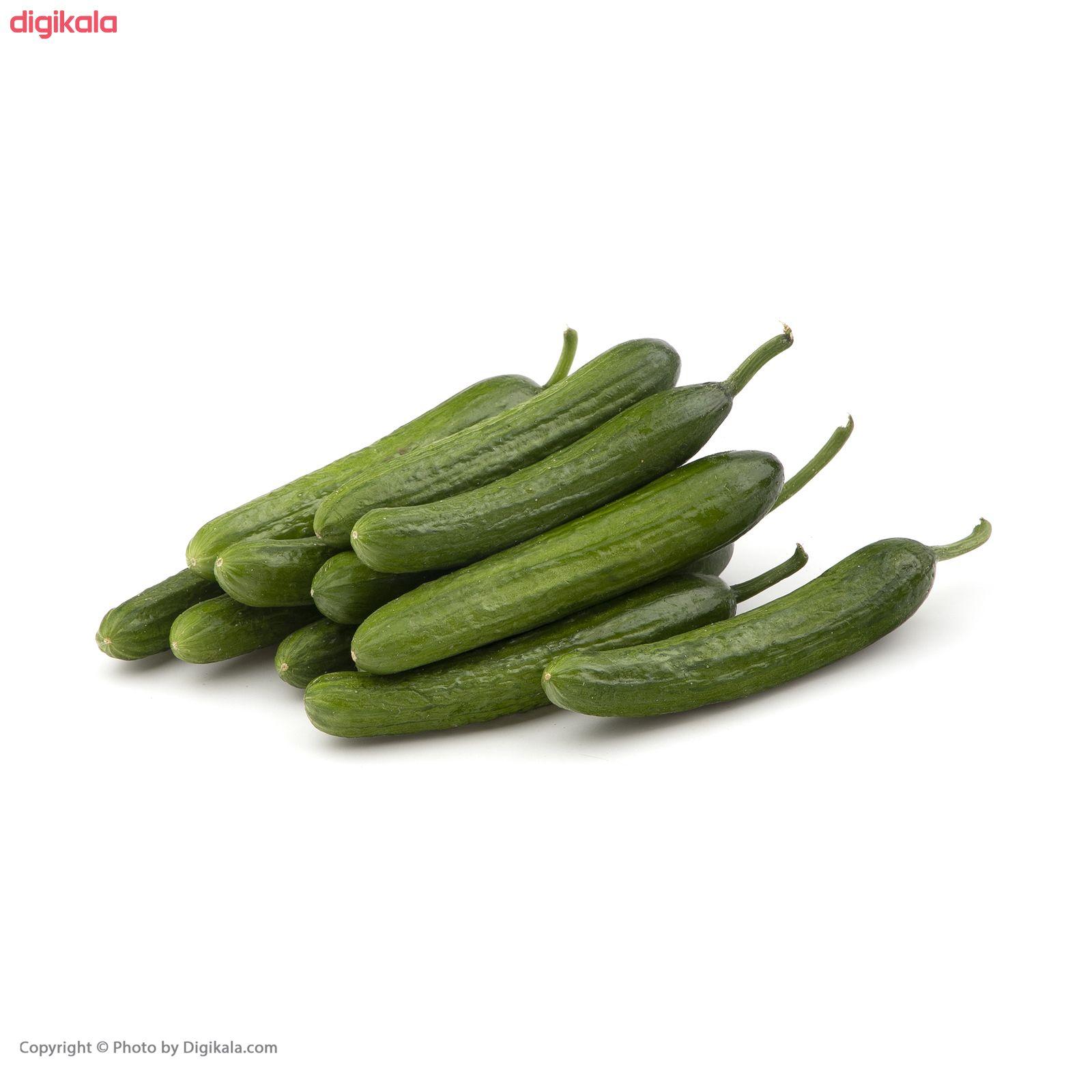 خیار گلخانهای فله - 1 کیلوگرم main 1 2