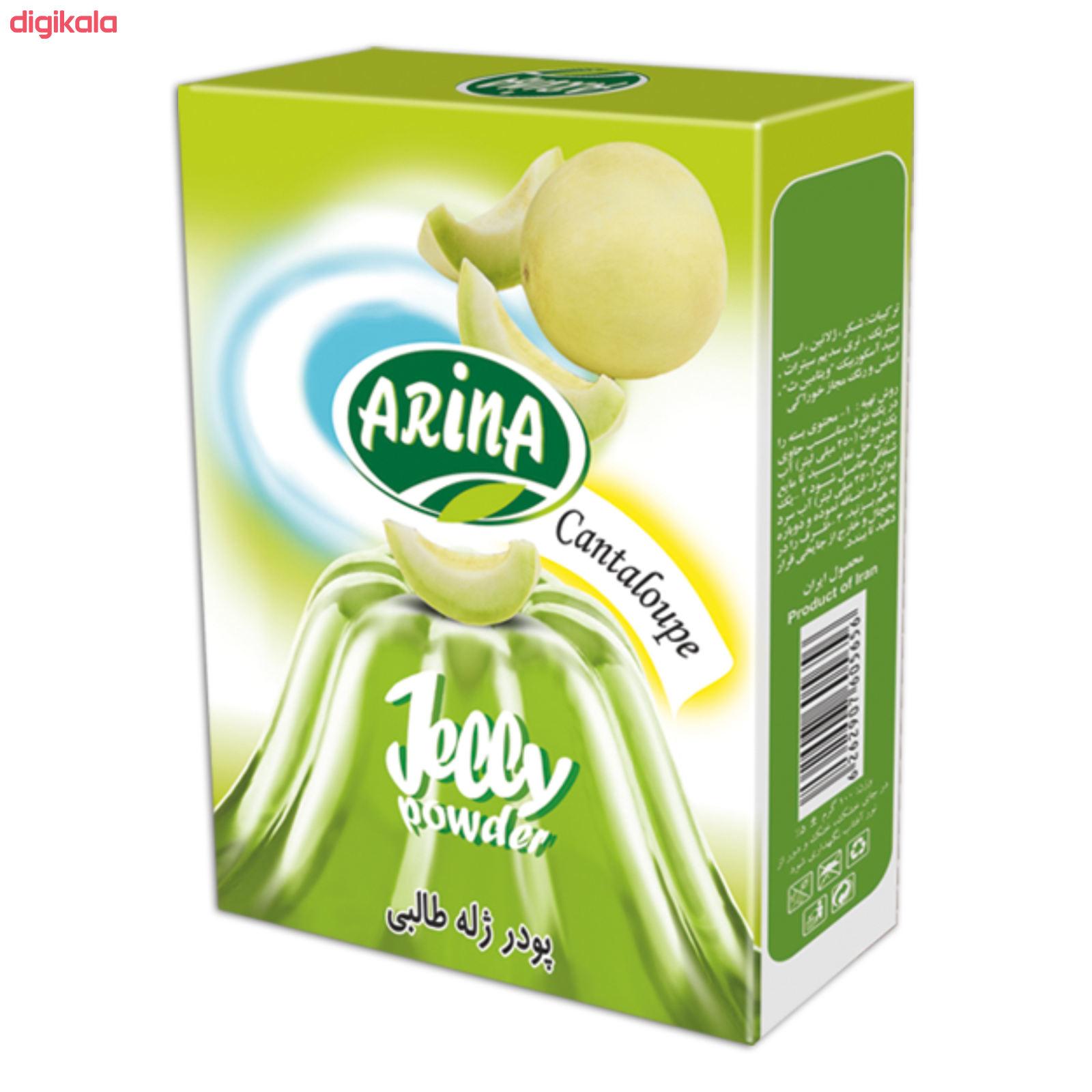 پودر ژله طالبی آرینا - 100 گرم main 1 1