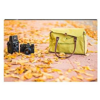 تابلو شاسی طرح کیف، دوربین و برگهای پاییزی کد 4G-AVZ-6016