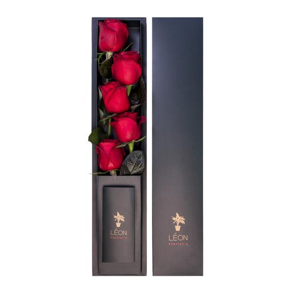 جعبه گل رز لئون کد BR5