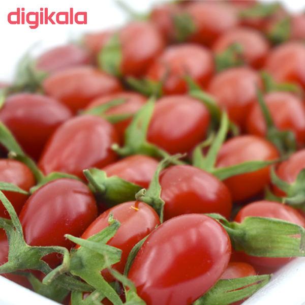 گوجه گیلاسی درجه یک - 400 گرم main 1 2