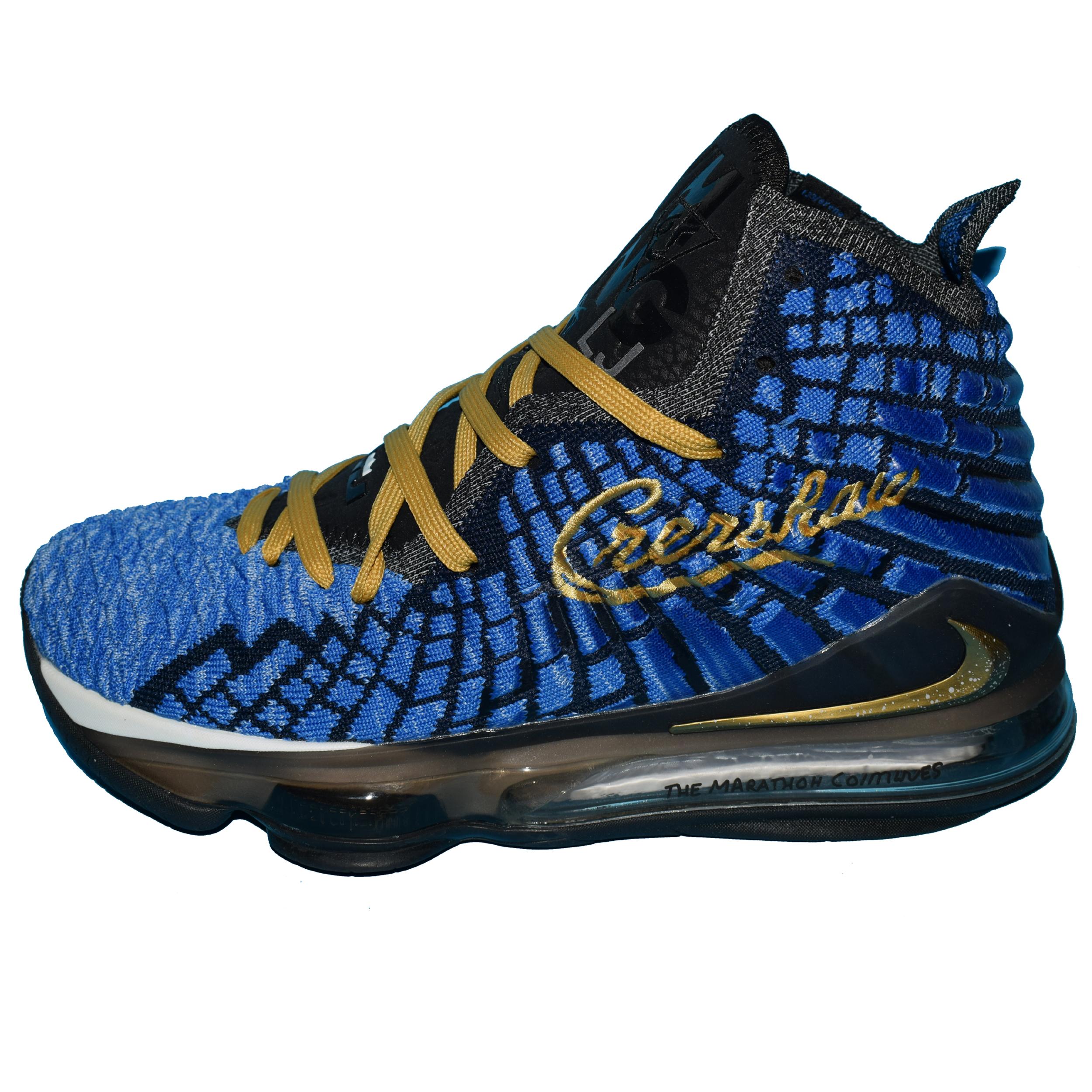 خرید                      کفش بسکتبال مردانه نایکی مدل Lebron 17              👟