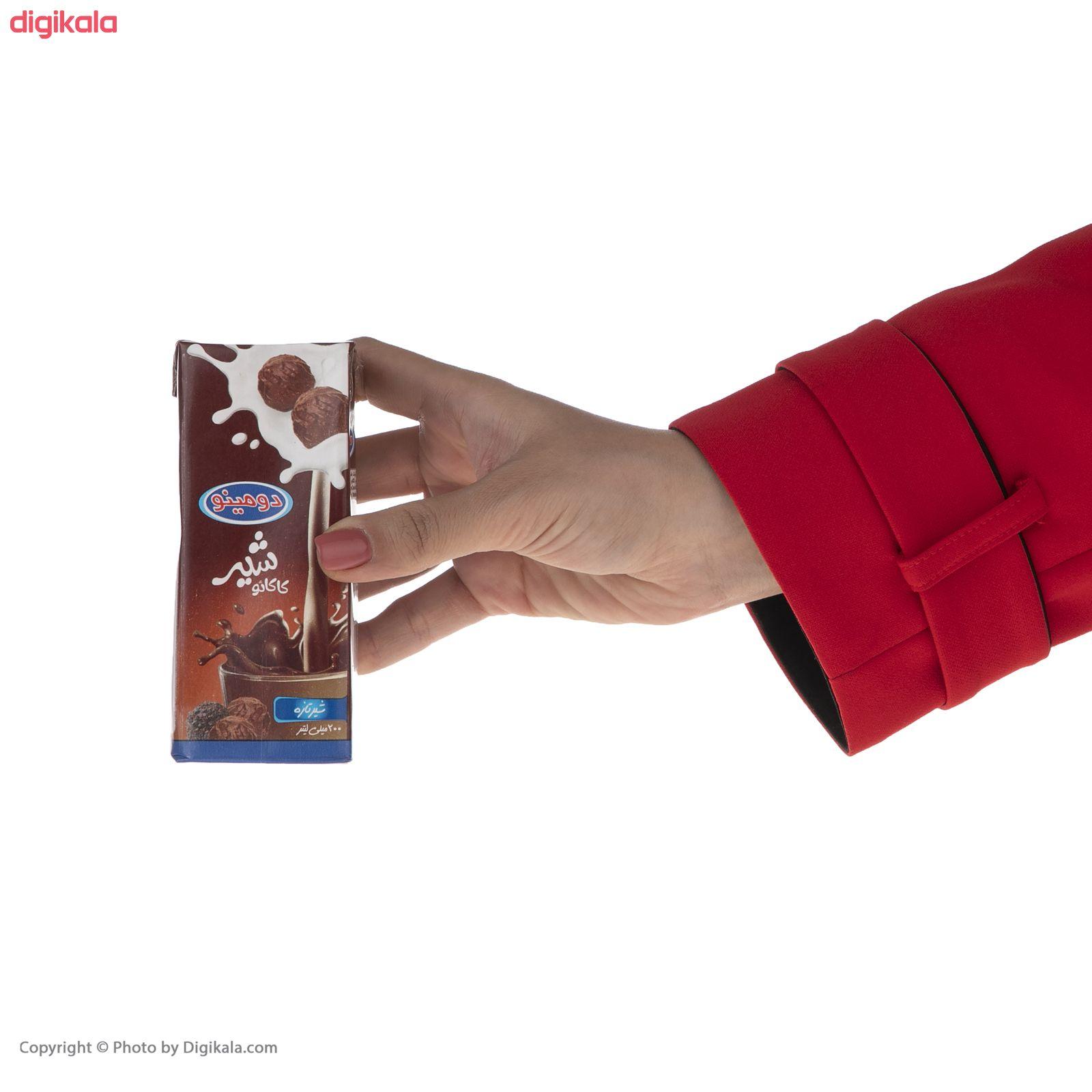 شیر کاکائو دومینو - 0.2 لیتر بسته 6 عددی main 1 7