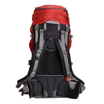 کوله پشتی کوهنوردی 65 لیتری مدل Futura Pro کد01