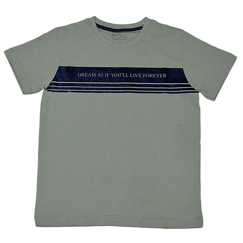 تی شرت پسرانه الیت طرح DREAM کد 1-621