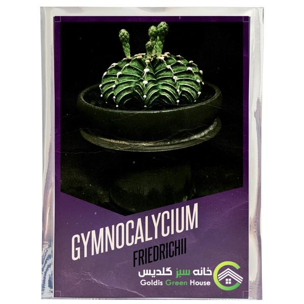بذر کاکتوس ژمینوکالیسیوم فردریکی خانه سبز گلدیس کد 30