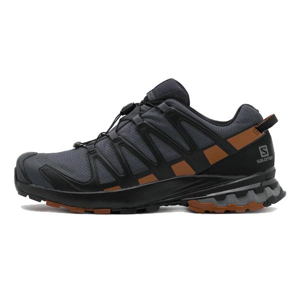 کفش مخصوص دویدن مردانه سالومون مدل Xa Pro 3D V8 Gtx GORE-TEX Ebony