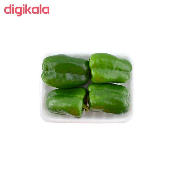 فلفل دلمه سبز درجه یک _ 500 گرم main 1 1