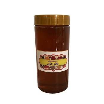 عسل طبیعی بانوجان - ۱۰۰۰ گرم