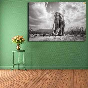 تابلو شاسی مدل فیل کد 06