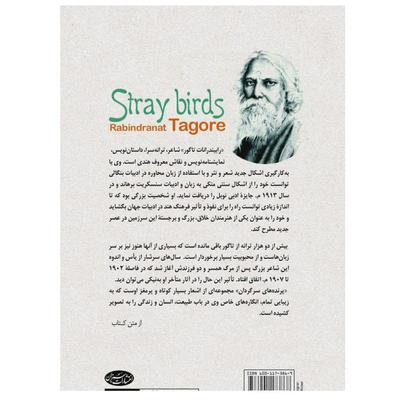 کتاب پرندههای سرگردان اثر رابیندرانات تاگور انتشارات سبزان