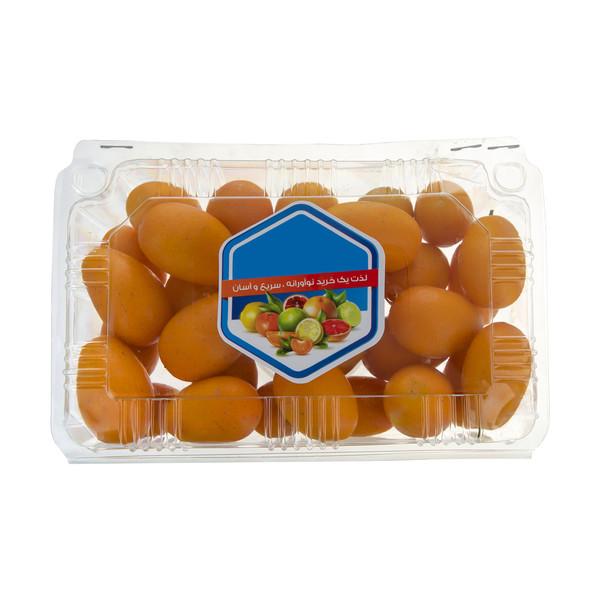 کامکوات میوه پلاس - 500 گرم