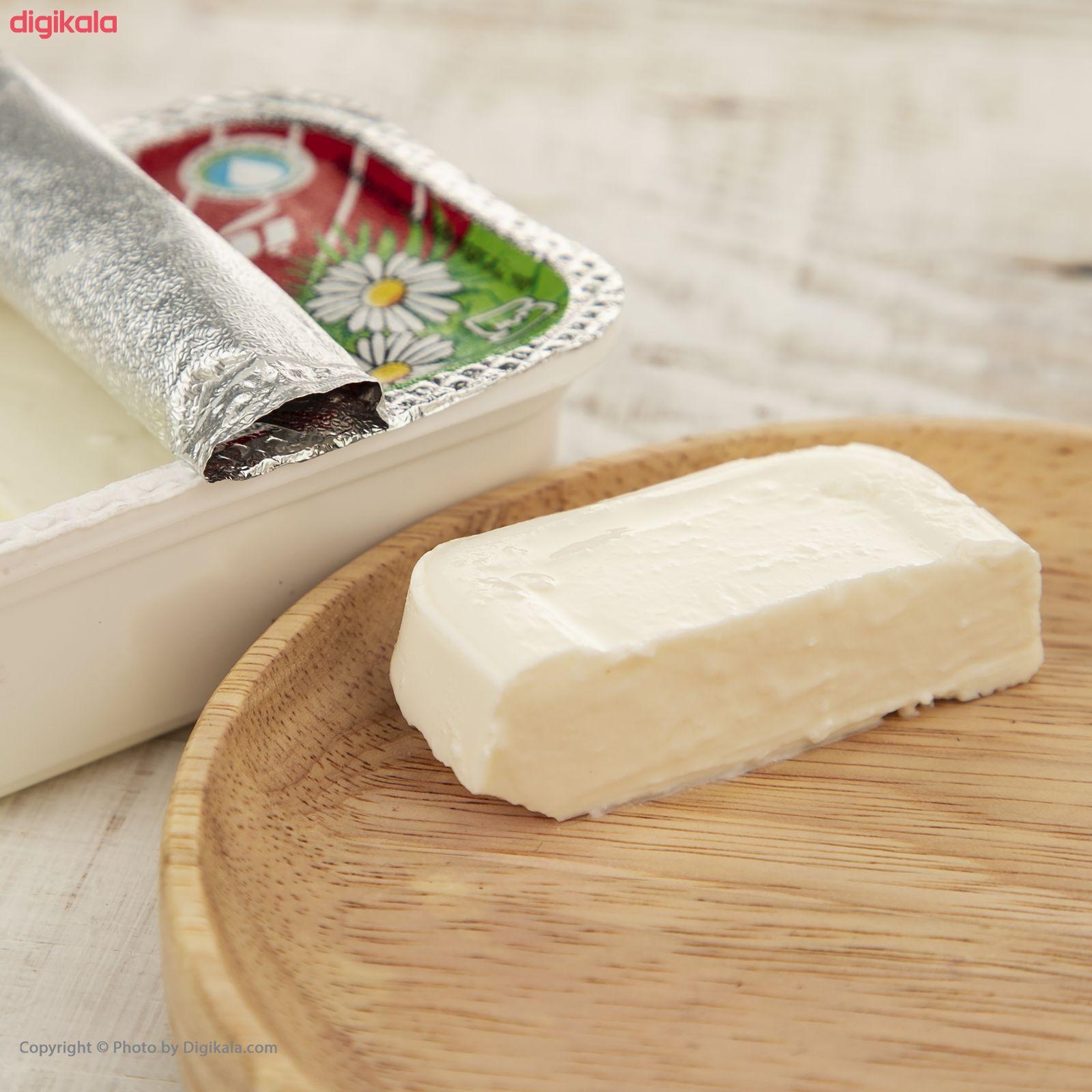 پنیر تازه پاستوریزه پگاه - 450 گرم main 1 1