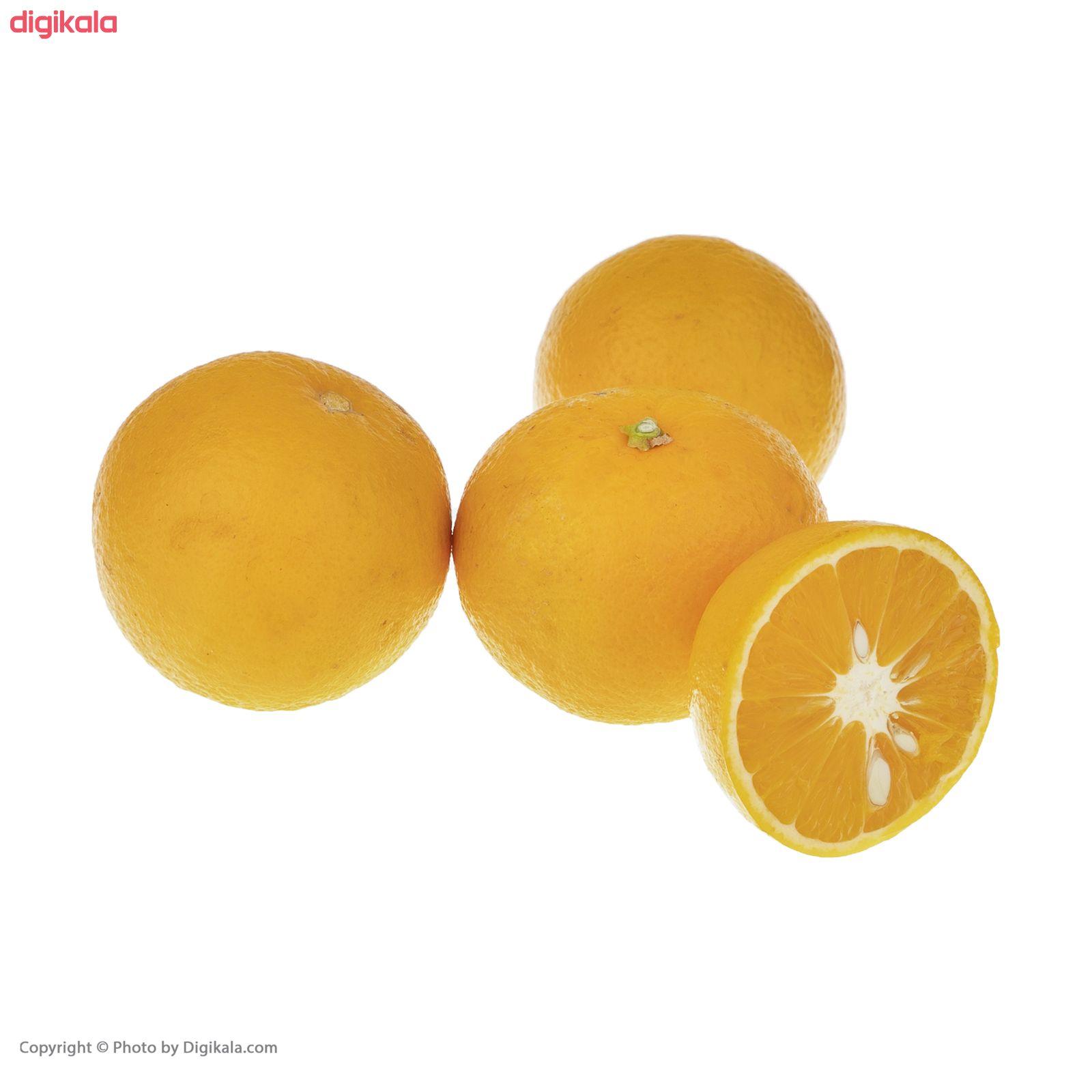 پرتقال آبگیری فله - 2.5 کیلوگرم main 1 2