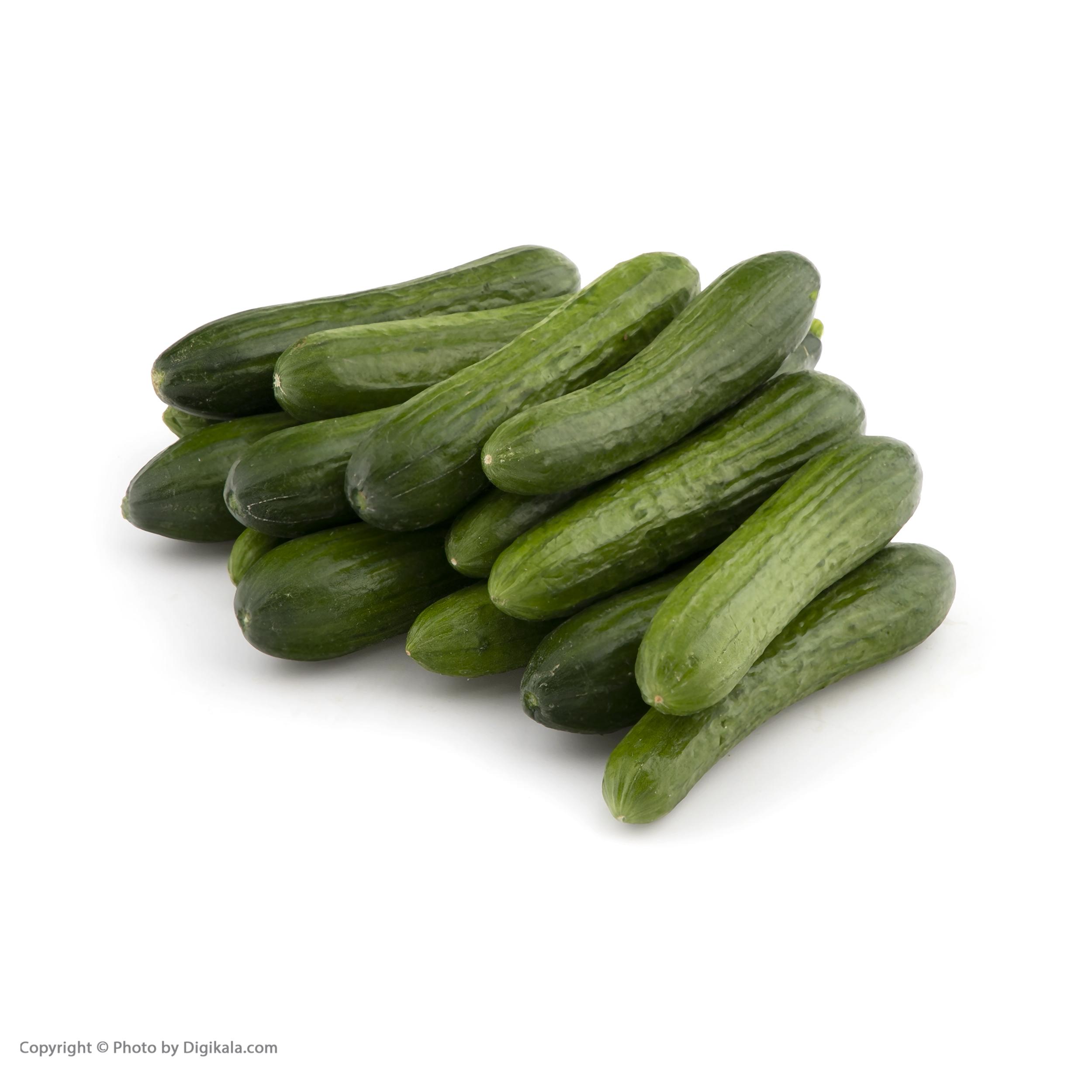 خیار گلخانه ای میوه پلاس - 1 کیلوگرم main 1 7