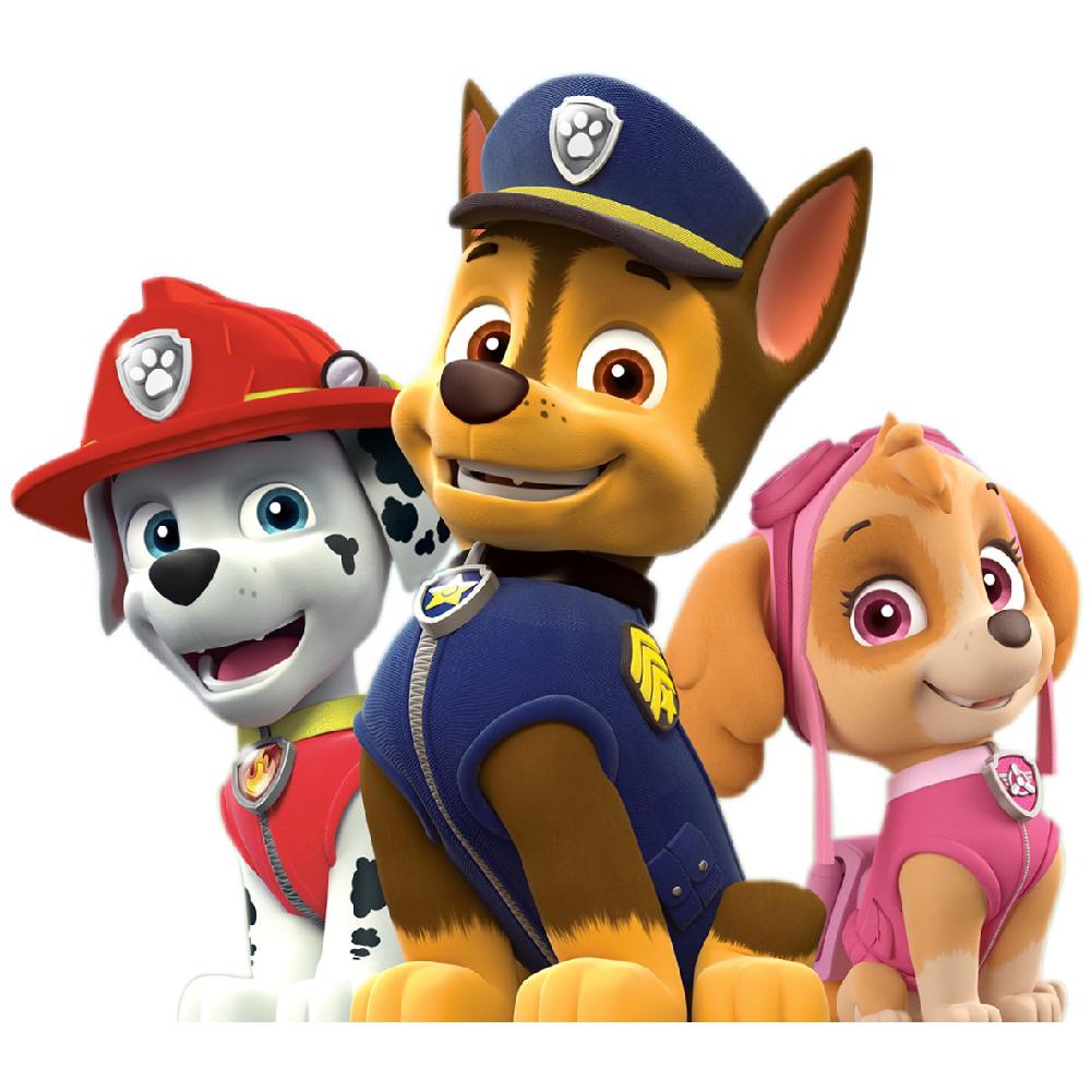 استیکر فراگراف FG طرح سگ های نگهبان کد paw patrol 019