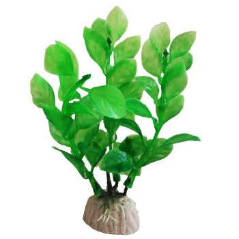گیاه تزیینی آکواریوم کد 03