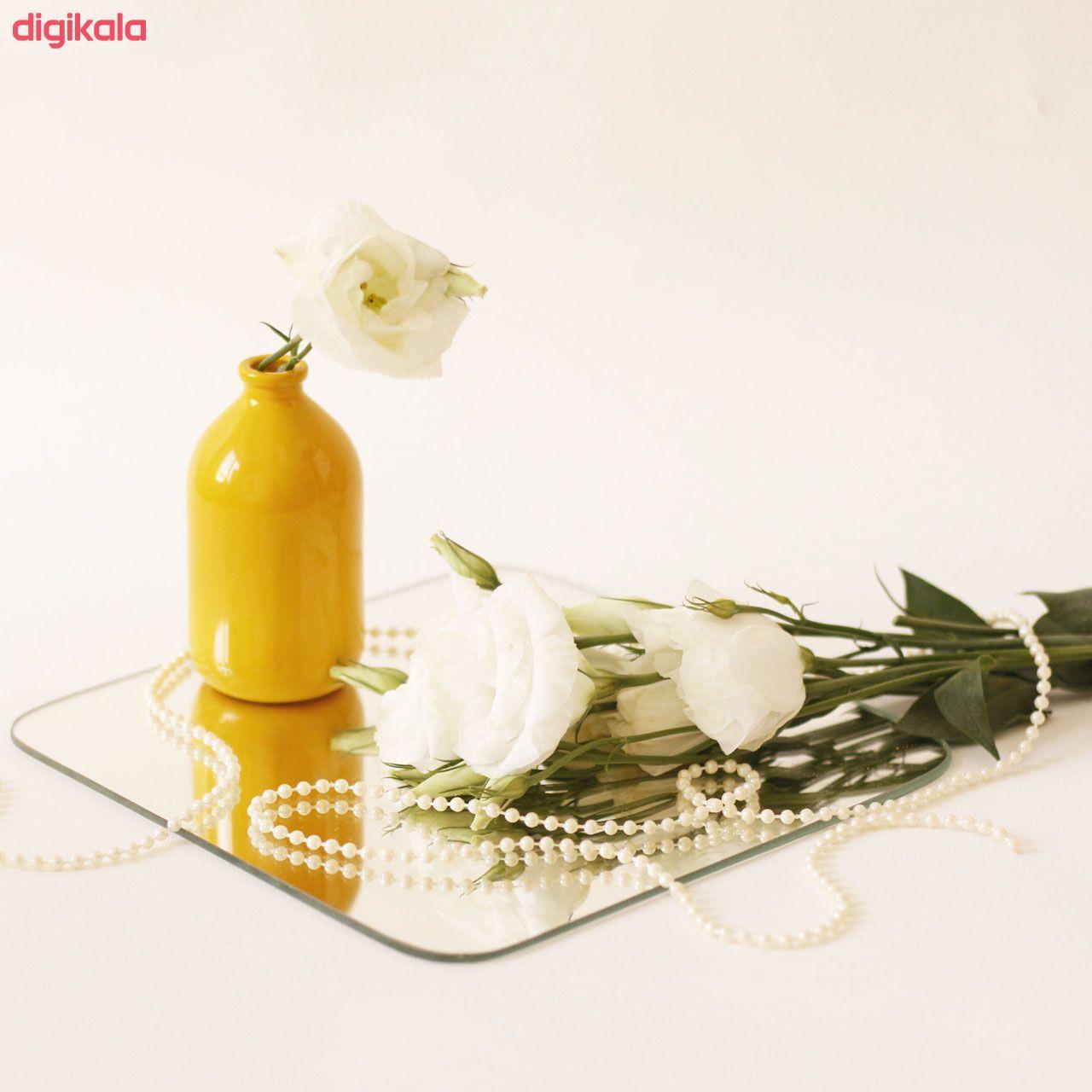 گلدان مدل N20 کد NG10 main 1 2