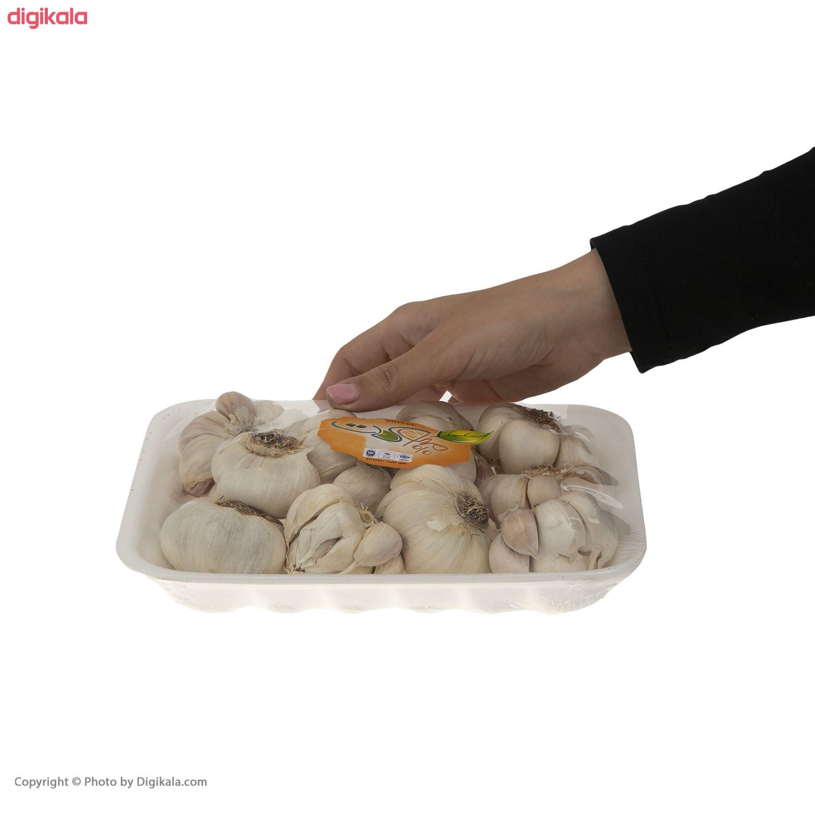 سیر میوکات - 500 گرم main 1 2