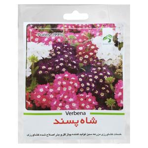 بذر گل شاه پسند گرین فارم کد GR 131