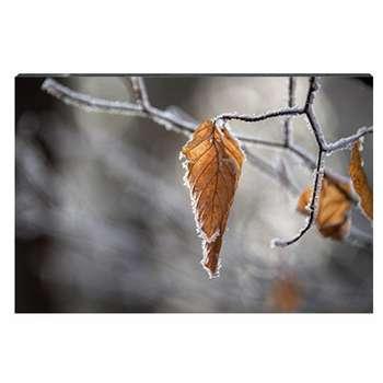 تابلو شاسی طرح برگهای پاییزی بر شاخه درخت کد 4G-AVZ-6015