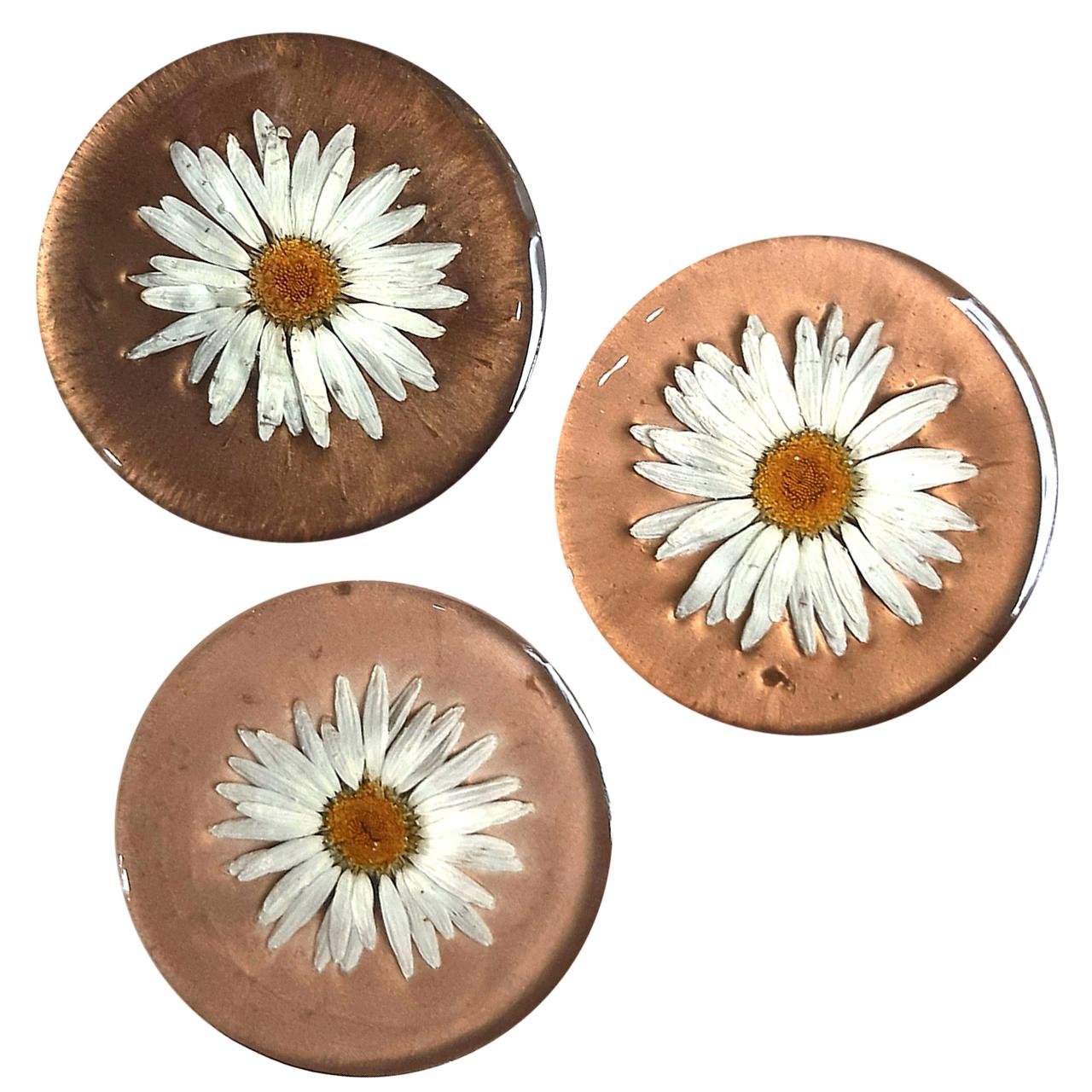 زیر لیوانی رزینی مدل گل طبیعی بسته 3 عددی