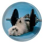 پیکسل طرح گربه و دمبل مدل S3110