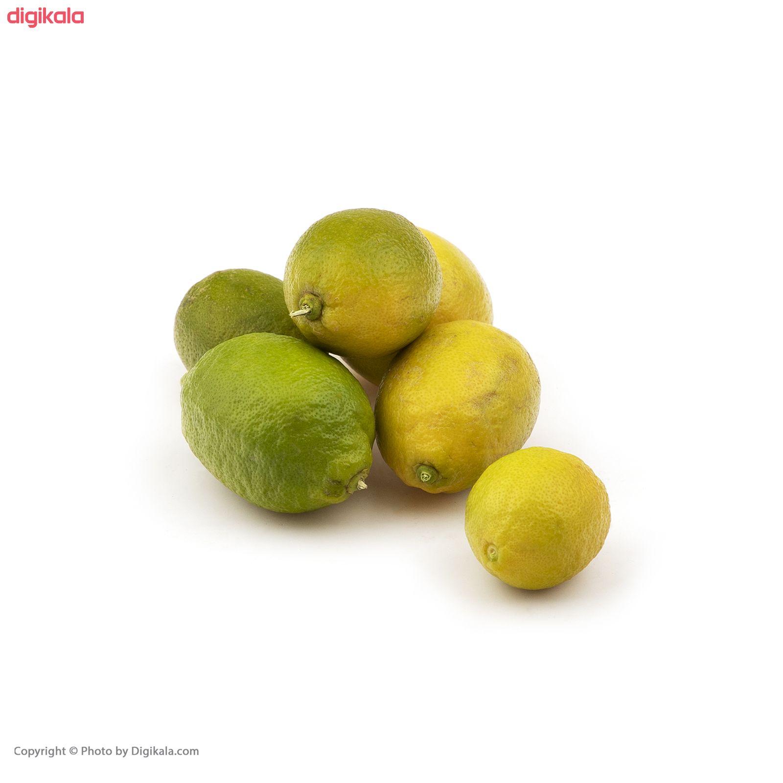 لیمو ترش سنگی فله - 500 گرم main 1 2
