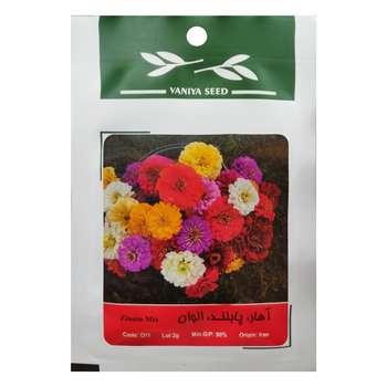 بذر گل آهار پابلند الوان وانیا سید مدل O11