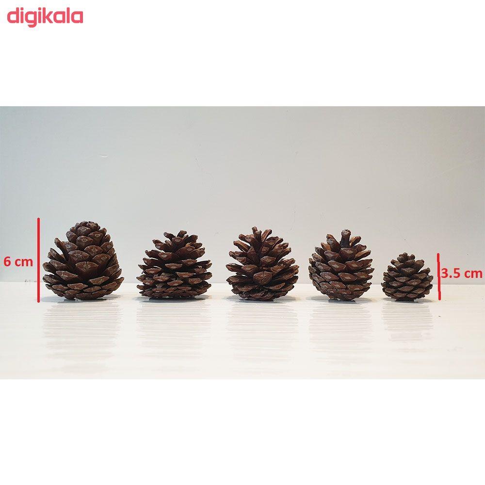 میوه تزیینی درخت کاج کد hyt5 مجموعه 5 عددی main 1 1