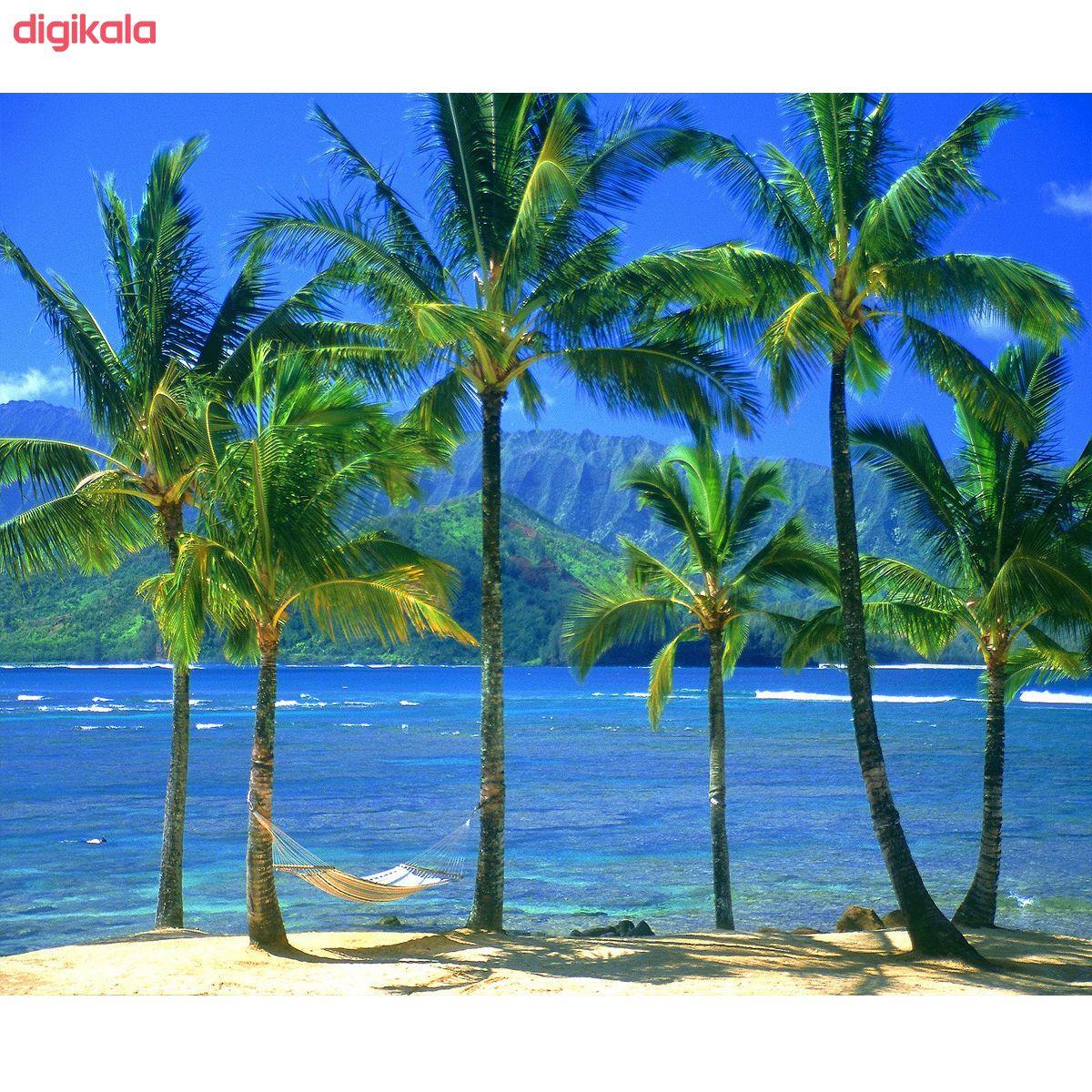 تابلو بوم طرح ساحل کد Best Nature 86-N