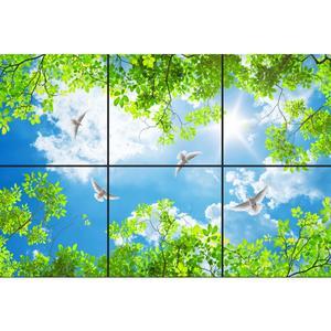 تایل سقفی آسمان مجازی طرح بهار و پرواز کبوتر کد 120 سایز 60x60 سانتی متر مجموعه 6 عددی