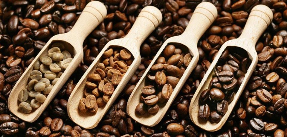 عکس انواع دانه های قهوه